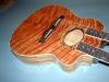 J-99 Doubleneck Acoustic/Electric
